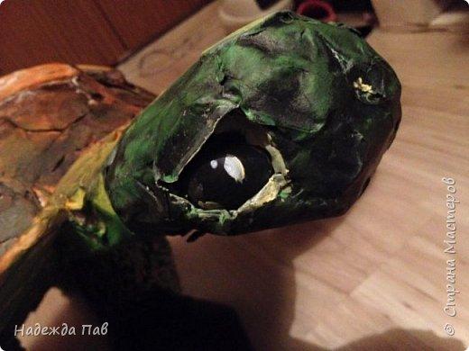 Черепаха papier mashe фото 5