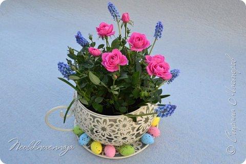 """1.""""Гнёздышко весеннее"""" Состав: керам.кашпо, флор.губка (оазис), сизаль, пенопластовые яйца. Цветы и зелень: альстромерия, кустовая роза, статица, салал, фисташка, пастушья сумка.  фото 8"""
