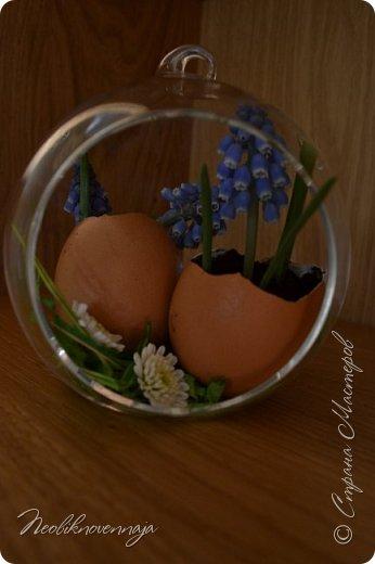 """1.""""Гнёздышко весеннее"""" Состав: керам.кашпо, флор.губка (оазис), сизаль, пенопластовые яйца. Цветы и зелень: альстромерия, кустовая роза, статица, салал, фисташка, пастушья сумка.  фото 24"""