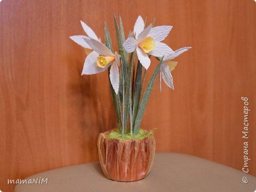 Нарциссы из гофрированной бумаги фото 5