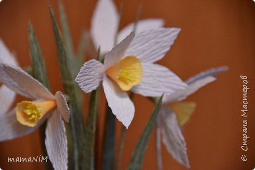 Нарциссы из гофрированной бумаги фото 3