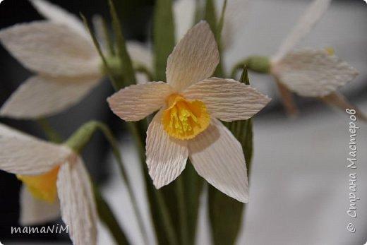 Нарциссы из гофрированной бумаги фото 6