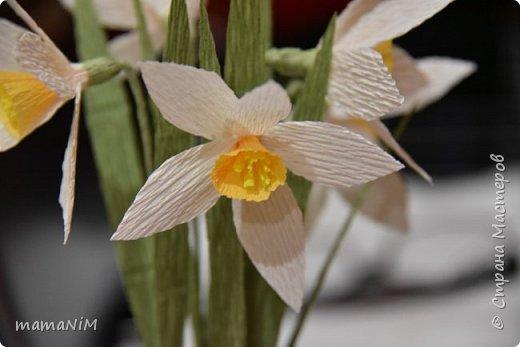 Нарциссы из гофрированной бумаги фото 7