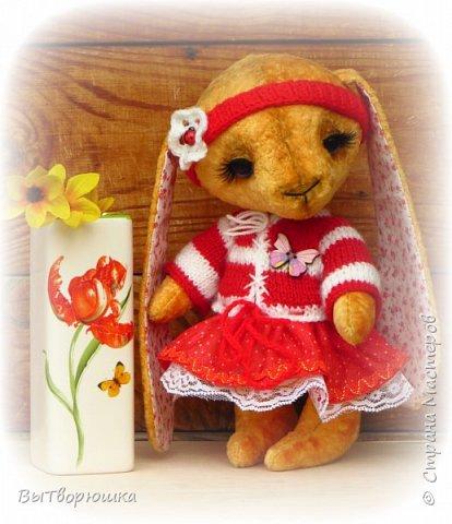 Мишка Лука. фото 5