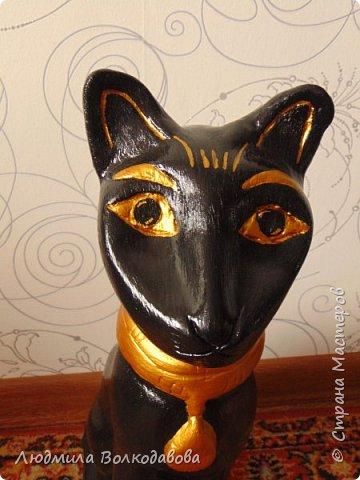 Добрый день! Дорогие друзья, представляю вашему вниманию египетскую кошечку. фото 2