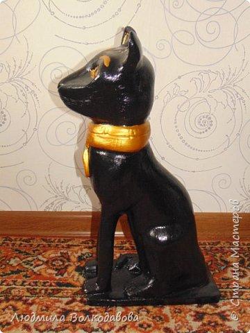 Добрый день! Дорогие друзья, представляю вашему вниманию египетскую кошечку. фото 3