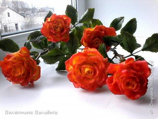Добрый день уважаемые мастера и мастерицы Страны Мастеров!!Очередные розы,на сей раз двухцветные!!! фото 1
