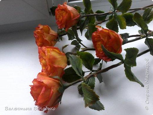 Добрый день уважаемые мастера и мастерицы Страны Мастеров!!Очередные розы,на сей раз двухцветные!!! фото 3