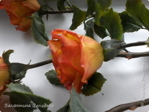 Добрый день уважаемые мастера и мастерицы Страны Мастеров!!Очередные розы,на сей раз двухцветные!!! фото 8
