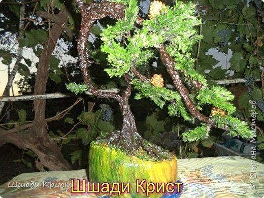 деревья искусственные в миниатюре. фото 1