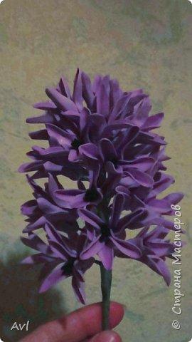 Наконец у меня появился весенний цветочек - гиацинт.