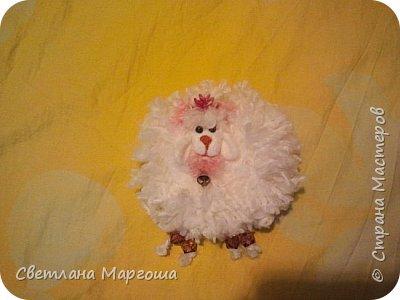 Эту овечку вязала крючком. Получилась она яркой, симпатичной и приятной на ощупь. Теперь живет у новой хозяйки)) фото 4