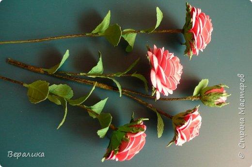 """Как говорится: """"Дело было вечером, делать было нечего...""""  Буквально позавчера просто накрутила эти розы, даже не зная для чего.. . фото 4"""