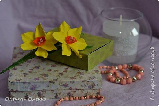 Добрый вечер!  Я очень люблю цветы, они прекрасны.Каждый цветок он неповторим:хрупкий,нежный, величественный.Некрасивых цветов нет.Цветы так быстро увядают,но многие мастера создают их из разных материалов,и я учусь у многих мастеров . Одним из материалов для создания цветов есть фоамиран,и это мои первые работы с этим замечательным материалом . фото 8