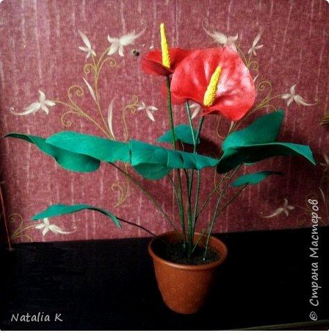 Это моя первая работа с фоамираном - розы в корзине)))) фото 3