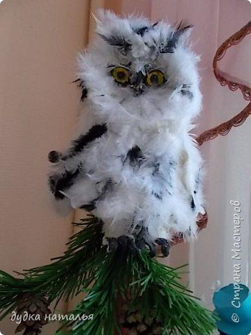 Вот такая полярная совушка у меня получилась из ваты и перьев. фото 1