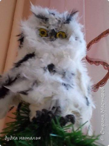 Вот такая полярная совушка у меня получилась из ваты и перьев. фото 3