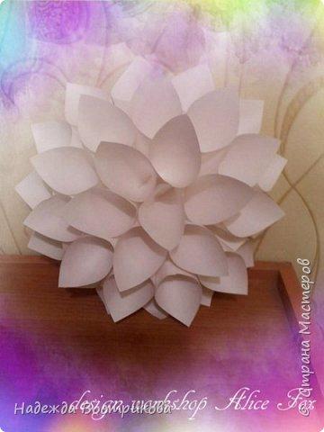 гигантская напольная роза фото 3