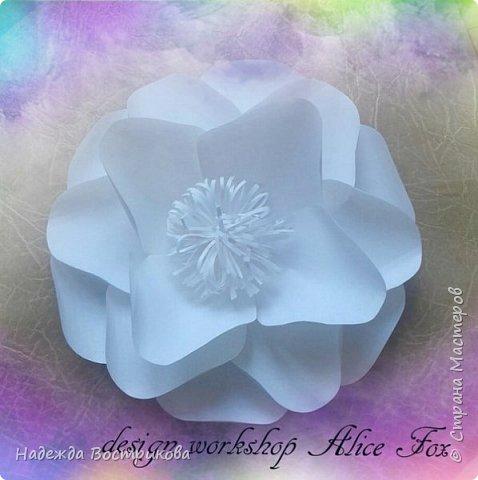 гигантская напольная роза фото 4