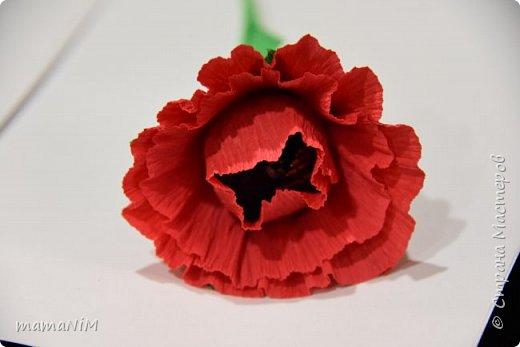 Миники цветочки фото 2
