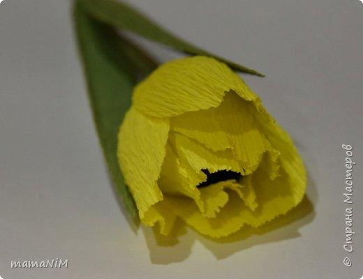Миники цветочки фото 3