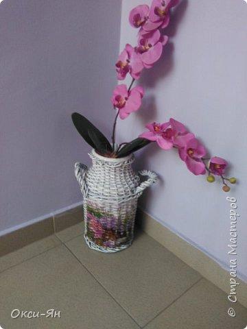 Решила раскрасить домик для моих кактусов. Даже бабочки на магнитах пригодились. фото 5