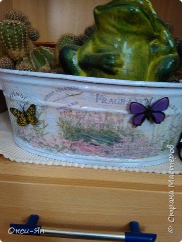 Решила раскрасить домик для моих кактусов. Даже бабочки на магнитах пригодились. фото 2