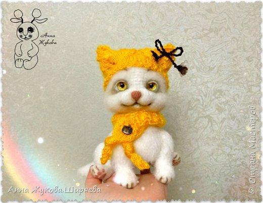 Белая кошечка Сильва. фото 1