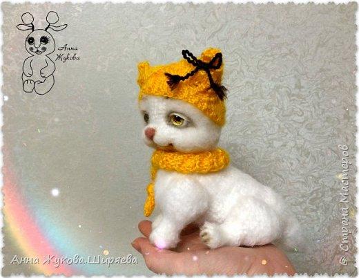 Белая кошечка Сильва. фото 7