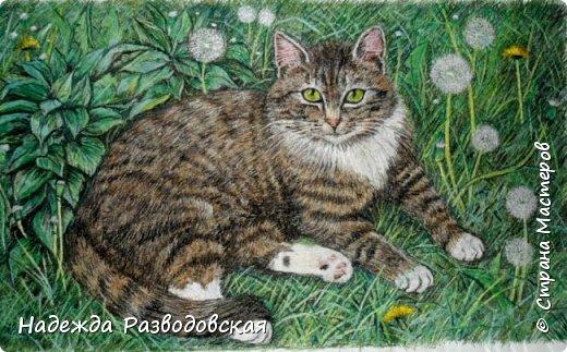 Наконец-то вышила  гладью еще одного кота. Как всегда  для  своей вышивки использовала синтетическую нить. фото 26