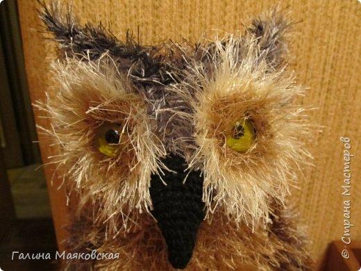 """Привет всем! Теперь у нас есть своя сова. Связана крючком из пряжи """"травки"""",  глаза- подкрашенные """"марблс"""", лапы - проволока, обмотанная пряжей, закрепленная клеем. Птичка почти в натуральную величину - 40 см. фото 2"""