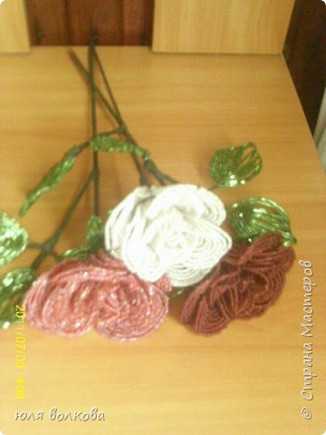 мои розы! фото 4