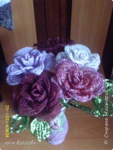 мои розы! фото 1