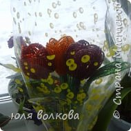 мои розы! фото 7
