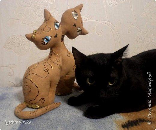 Кошечка фото 8