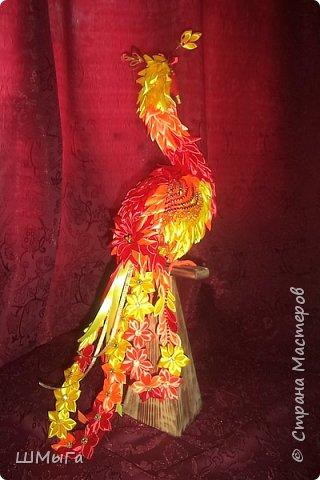 """Такую птичку смастерила Вика для участия в районной выставке-конкурсе. Одна из номинаций """"Пожарная ярмарка"""" фото 2"""