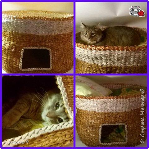 Добрый день дорогие рукодельницы и любители животных. Вот и у моего кота появился свой дом. фото 32