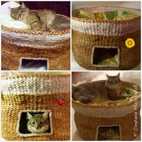 Добрый день дорогие рукодельницы и любители животных. Вот и у моего кота появился свой дом. фото 33
