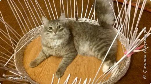 Добрый день дорогие рукодельницы и любители животных. Вот и у моего кота появился свой дом. фото 3