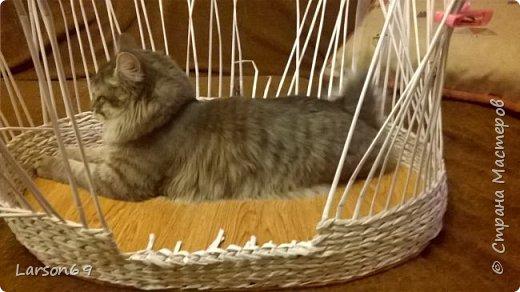 Добрый день дорогие рукодельницы и любители животных. Вот и у моего кота появился свой дом. фото 4