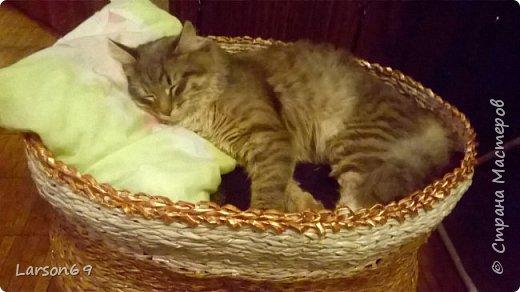 Добрый день дорогие рукодельницы и любители животных. Вот и у моего кота появился свой дом. фото 27