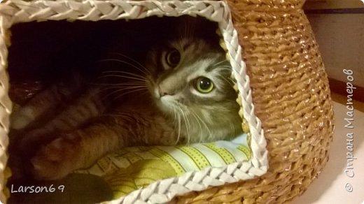 Добрый день дорогие рукодельницы и любители животных. Вот и у моего кота появился свой дом. фото 30