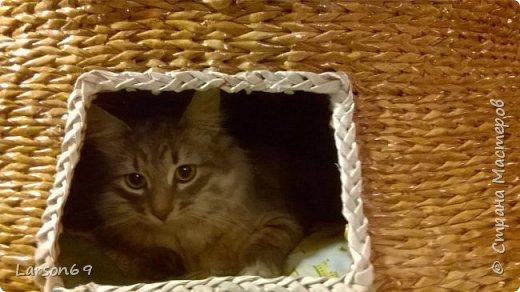 Добрый день дорогие рукодельницы и любители животных. Вот и у моего кота появился свой дом. фото 31