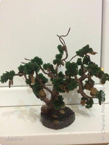 деревца фото 4