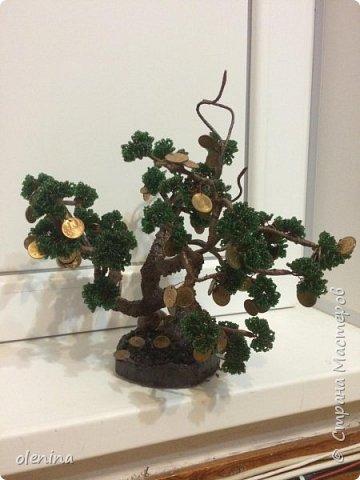 деревца фото 3