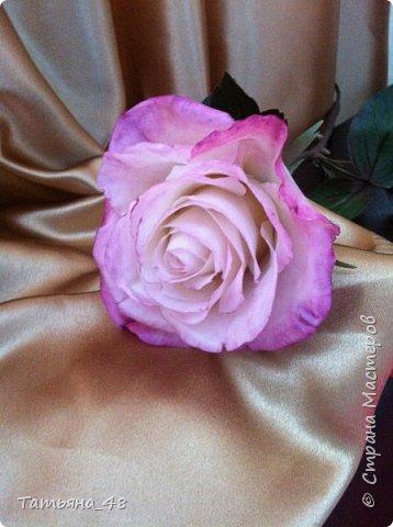 Привет всем. с опозданием  пишу комментарии. Это моя первая полноразмерная роза слепленная  по МК Татьяны Карелиной!!!! Есть масса ошибок и недочетов, но в общем результатом довольна. Следущая будет лучше..... А теперь просмотр фоток...... фото 3