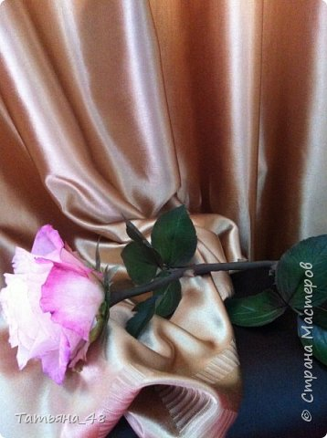 Привет всем. с опозданием  пишу комментарии. Это моя первая полноразмерная роза слепленная  по МК Татьяны Карелиной!!!! Есть масса ошибок и недочетов, но в общем результатом довольна. Следущая будет лучше..... А теперь просмотр фоток...... фото 4