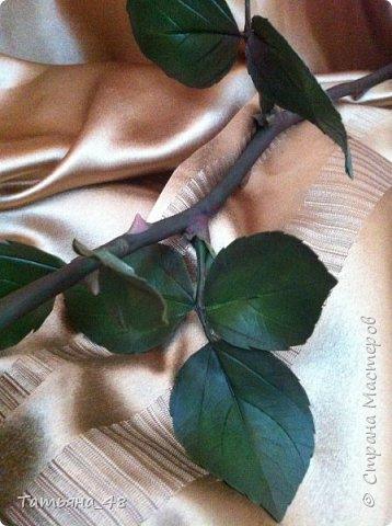 Привет всем. с опозданием  пишу комментарии. Это моя первая полноразмерная роза слепленная  по МК Татьяны Карелиной!!!! Есть масса ошибок и недочетов, но в общем результатом довольна. Следущая будет лучше..... А теперь просмотр фоток...... фото 7