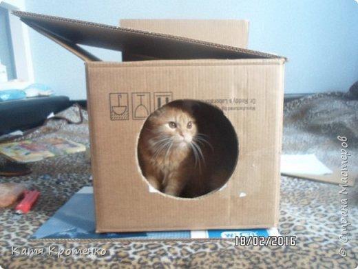 Приветствую всех жителей СМ. Наш любимец - Крысилий очень любит всякие коробки, пуфики и диваны, вот решила сотворить ему свой собственный. это мой первый кошачий дом. размер: Длина - 53см, высота - 55 см, ширина - 32 см. фото 3