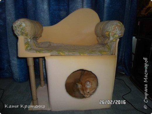 Приветствую всех жителей СМ. Наш любимец - Крысилий очень любит всякие коробки, пуфики и диваны, вот решила сотворить ему свой собственный. это мой первый кошачий дом. размер: Длина - 53см, высота - 55 см, ширина - 32 см. фото 6